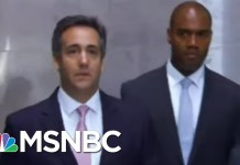 Buzzfeed News: Docs & Emails Show Donald Trump Told Cohen To Lie To Congress   The 11th Hour   MSNBC