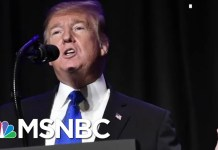 Trump: Wall Is 'On Its Way,' Will Be Harder To Climb Than Mount Everest  | The 11th Hour | MSNBC