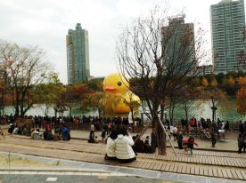 Rubber Duck and Crowds