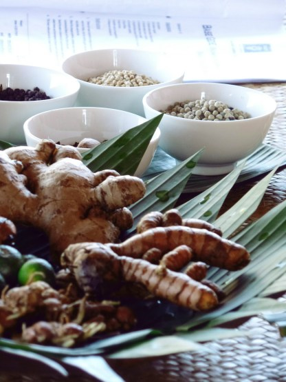 Paon Cooking Class Ubud Ingredients and Menu