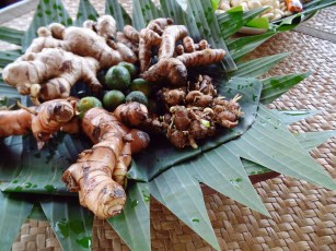 Paon Cooking Class Ubud Ingredients Roots