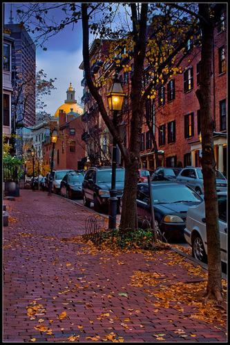 A Beacon Hill Autumn