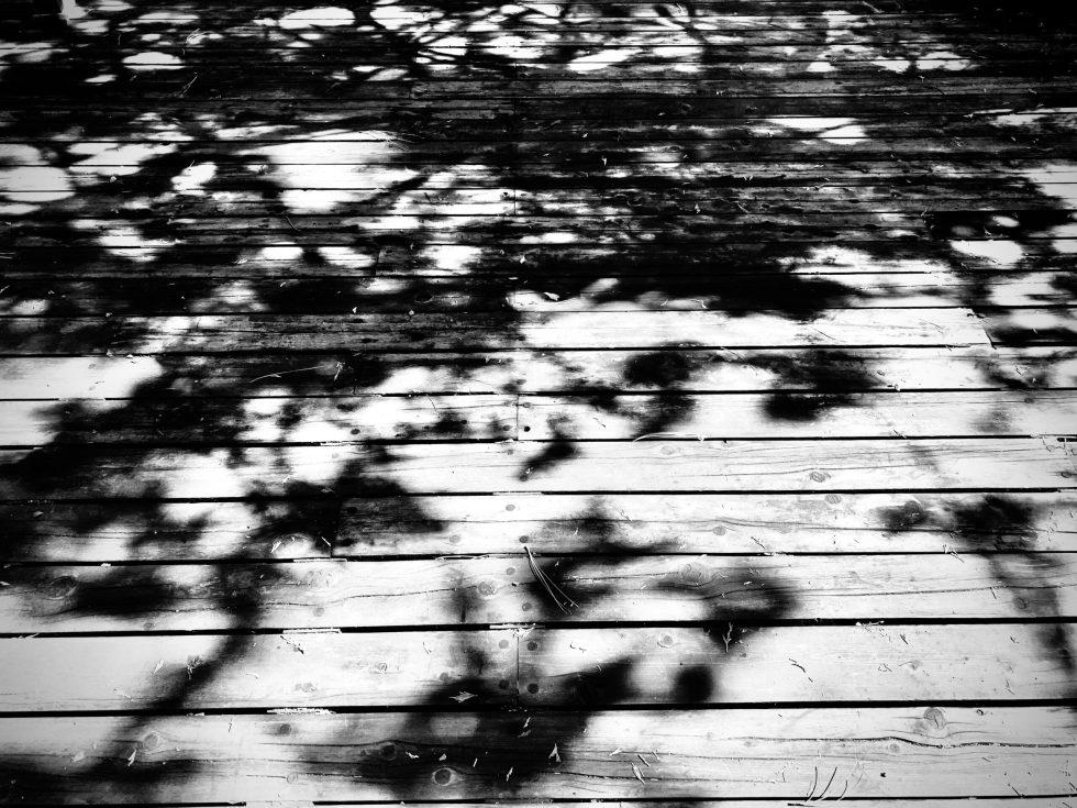 photography fotografia art arte poetry poem design diseno literature literatura foto photo