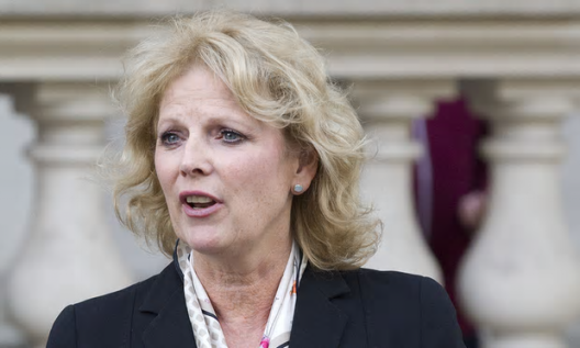 Anna Soubry [London News Pictures/Rex].