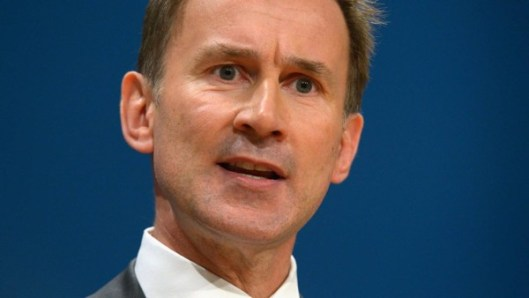 Jeremy Hunt: He thinks the NHS is bad because it doesn't have marble foyers.