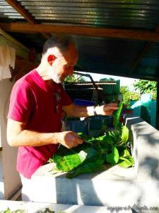Collecte de plantes par Didier a des fins medicinales