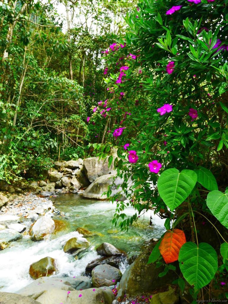 parc Farallones colombie