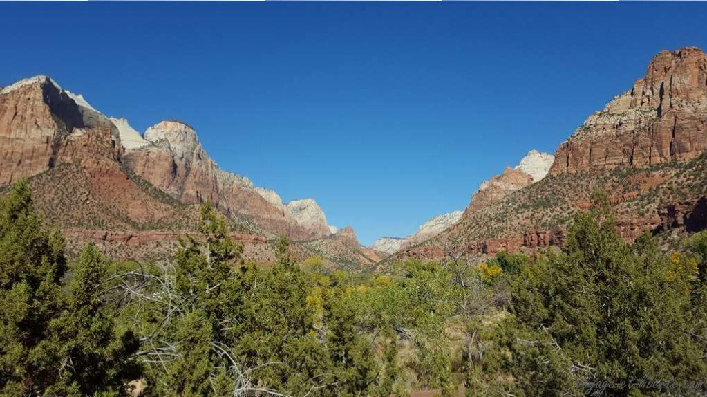 USA, Zion National Park