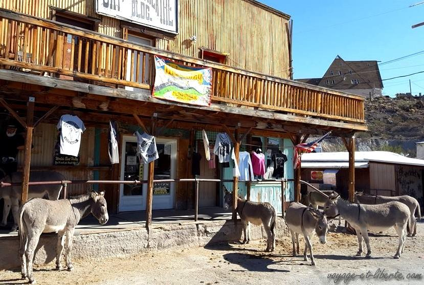 USA, Oatman, road 66, route 66