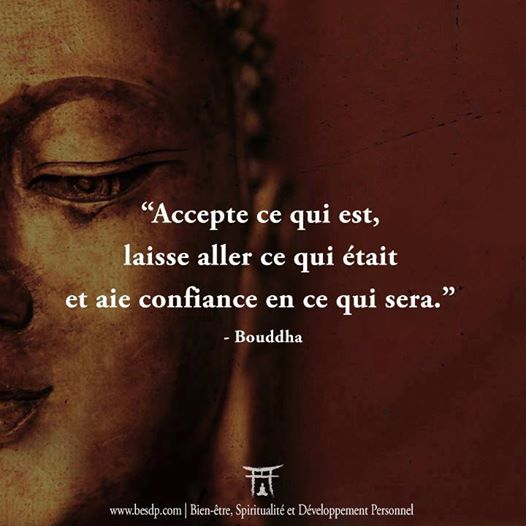 photographie image mots citation bouddha