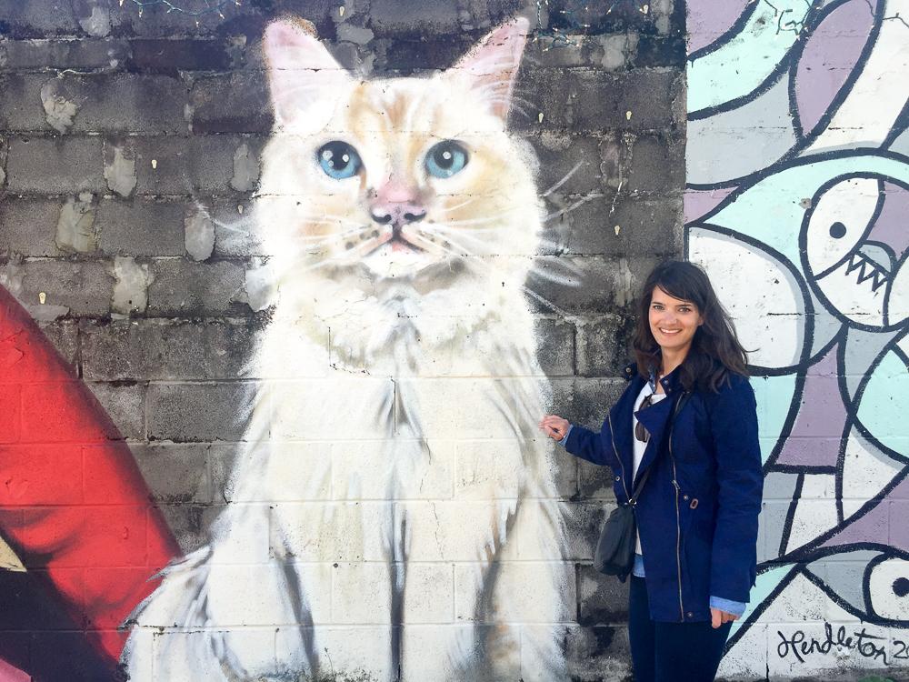 chat street art nouvelle orléans