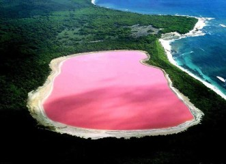 Gyphjolik découvre le lac rose d'australie