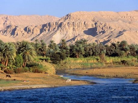 Jean-Marc Gyphjolik découvre la nature autour du Nil