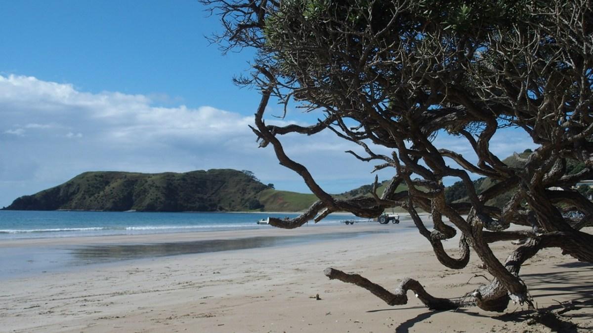 Opito bay - New Zealand 2016