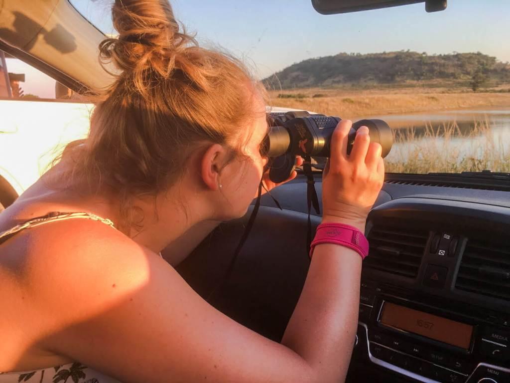 safari-autotour-afrique-du-sud