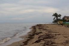 201409 - Belize - 0011