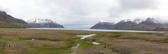 201412 - Antarctique - 0493 - Panorama