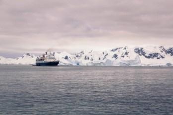 201412 - Antarctique - 0802
