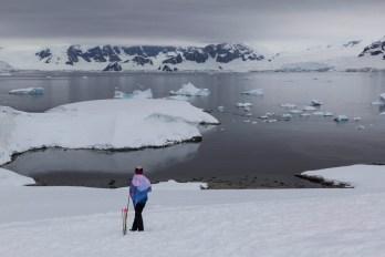 201412 - Antarctique - 0848