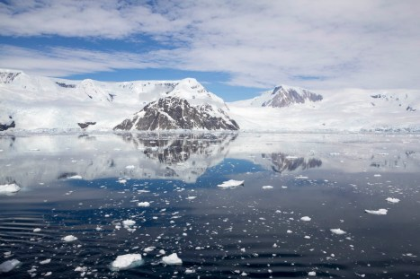 201412 - Antarctique - 1155