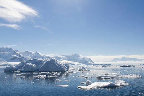 201412 - Antarctique - 1217