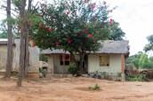201503 - Malawi - 0043