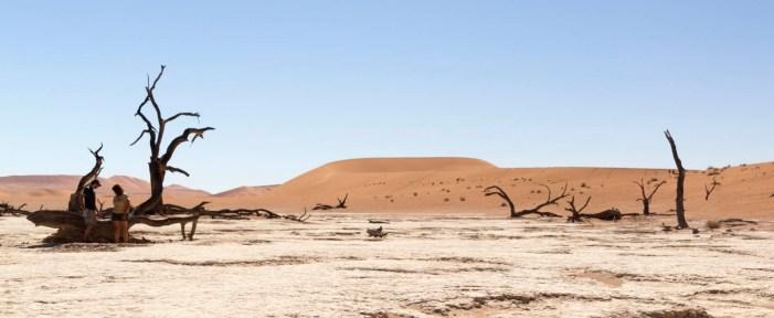 201504 - Namibie - 0546