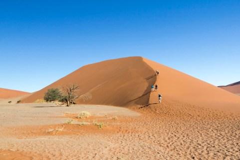 201504 - Namibie - 0549