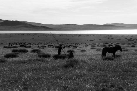 201509 - Mongolie - 0212