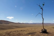 201509 - Mongolie - 0310