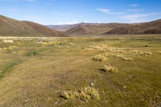 201509 - Mongolie - 0342
