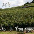 bourgogne a visiter en 2015