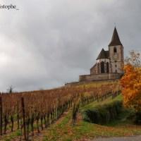 Hunawihr, la clinique des cigognes d'Alsace