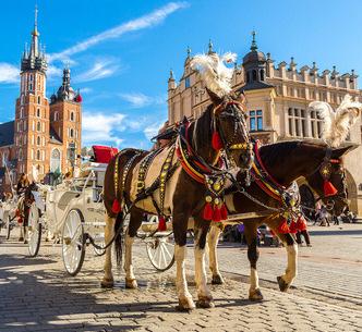 Voyages Jaccon | Pologne et Allemagne : Trésors culturels et historiques