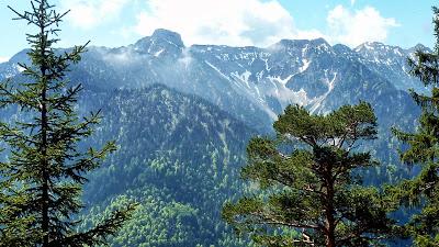 De Eschenlohe à l'Osterfeuerspitze ; balade bucolique en Bavière (Randonnée Allemagne) 13