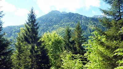 De Eschenlohe à l'Osterfeuerspitze ; balade bucolique en Bavière (Randonnée Allemagne) 7