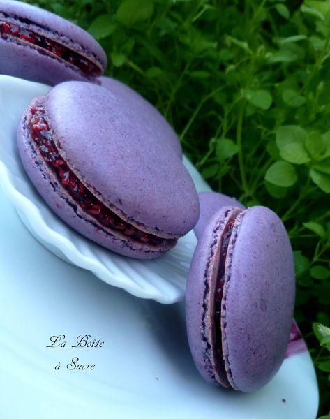 Macarons violette framboise 3