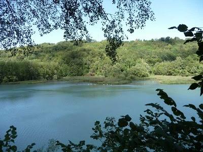 rivière la sone isère