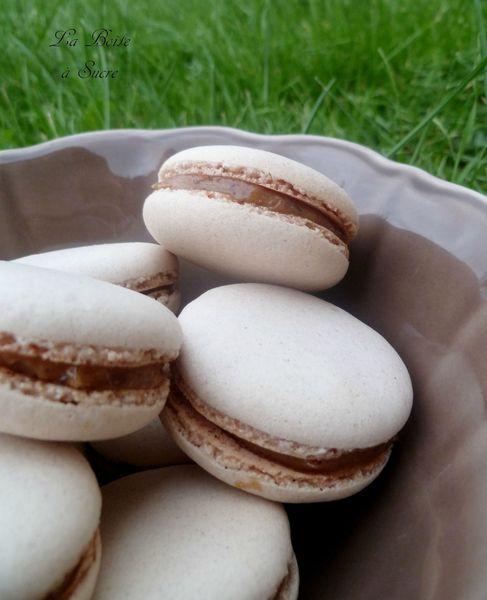 Macarons pralinés 1