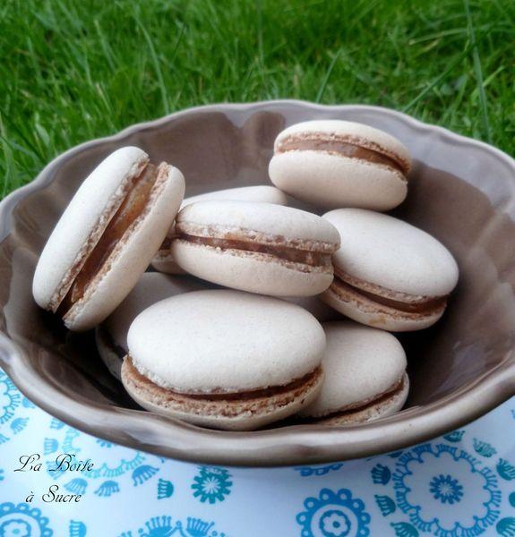 Macarons pralinés
