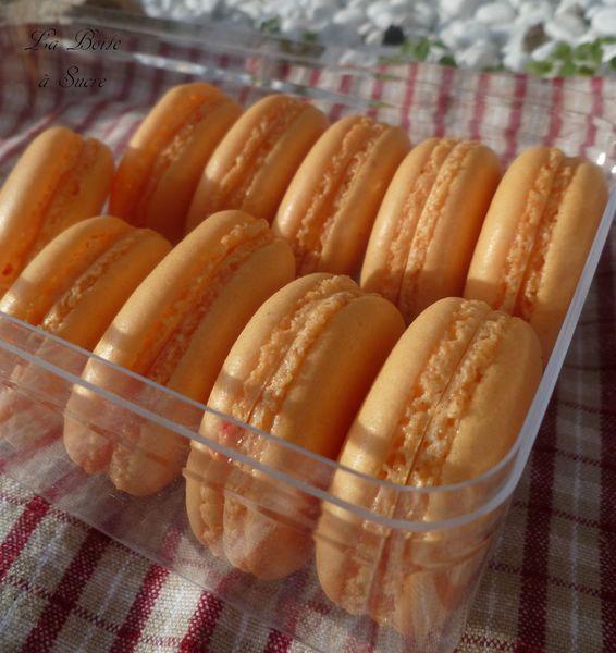Macarons passion 3