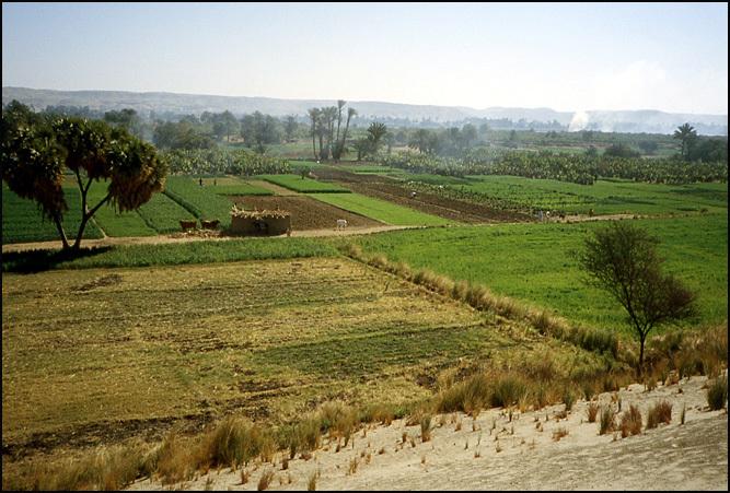 paysage egypte