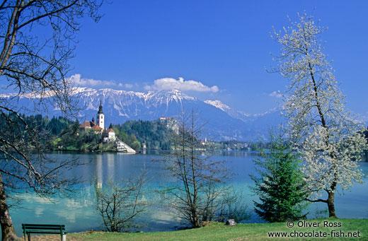 Bled, la perle de la Slovénie occidentale ; un lac enchanteur dans les Alpes juliennes 2