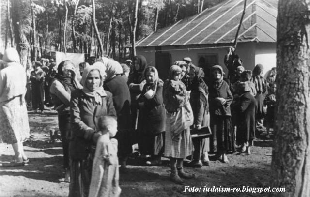Les Juifs de Roumanie pendant la 2ème guerre mondiale 1