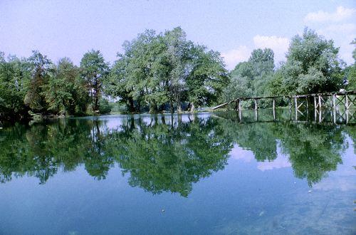 Rivière Una (crédit tchorski.morkitu.org)