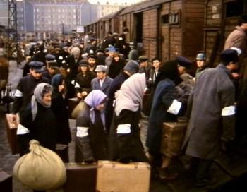 deportation holocauste