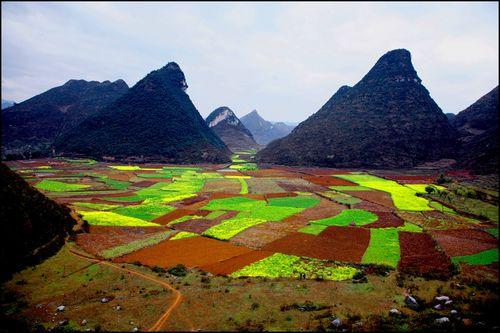 Voyage Chine - Shillin : Au-delà de la forêt de pierre, au-delà de l'orient… l'occident 4
