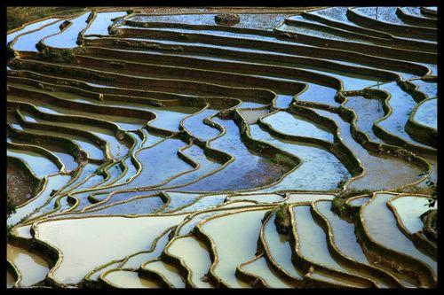 Du Yunnan à Yuanyang : Voyage Chine sur les « escaliers du ciel » 17