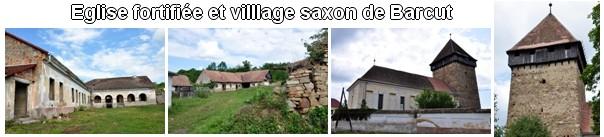 village saxon barcut