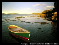 Capljina - Réserve naturelle d'Hutovo Blato
